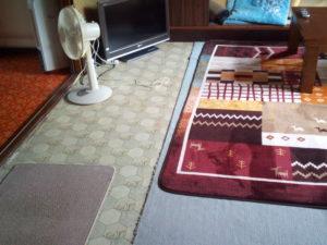 汚いカーペット4